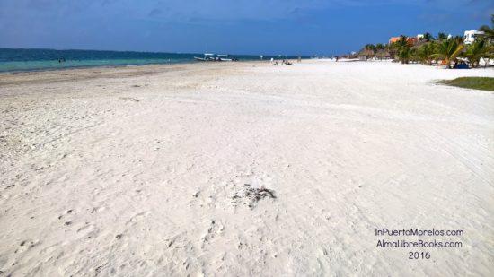 beach_south